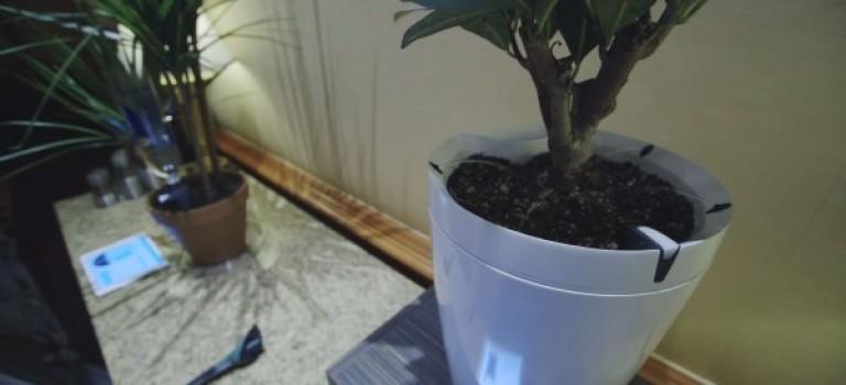 کنترل سلامت گیاهان با Pot و H2O از دور